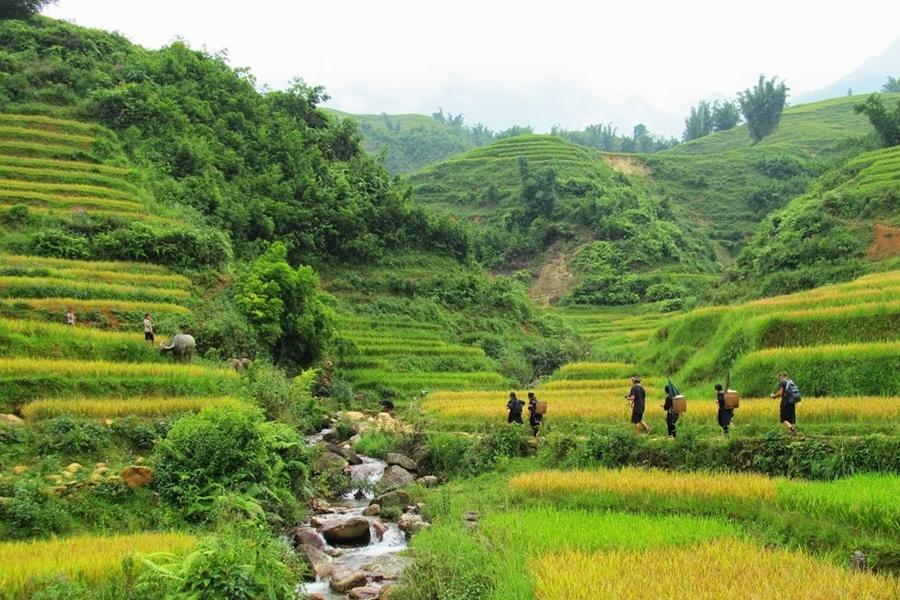 Trekking  Ta van village - Sapa tour