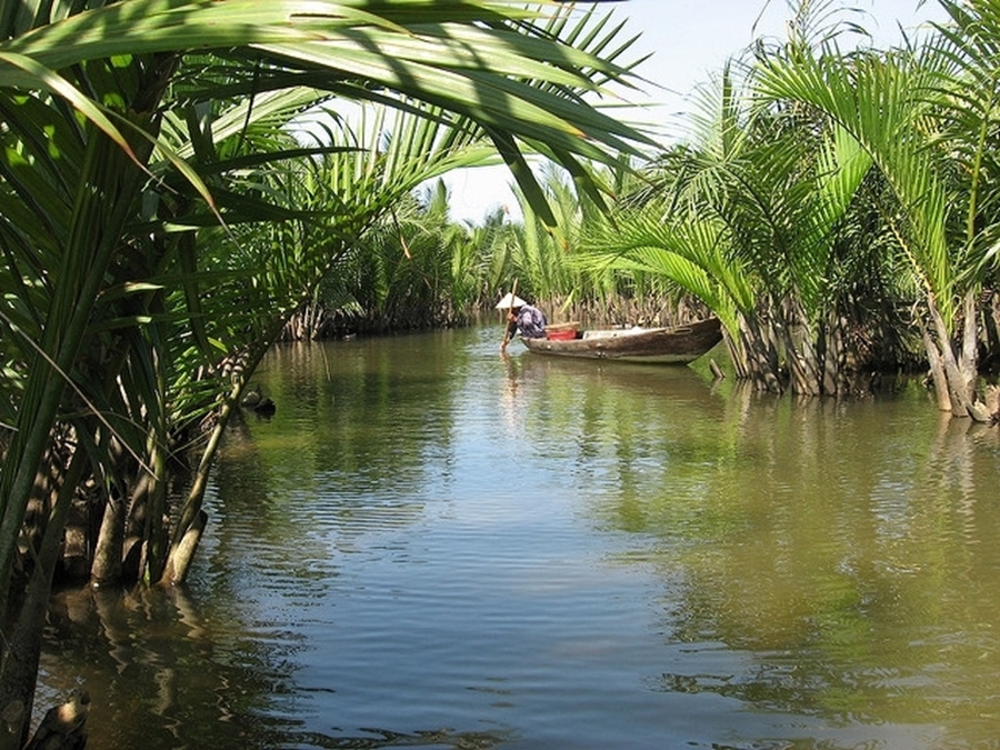 Coconut canals  in Hoi An