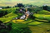 Sapa by bus 3 days - 2 nights (1 night in Ta Van village, 1 night in hotel) HA5
