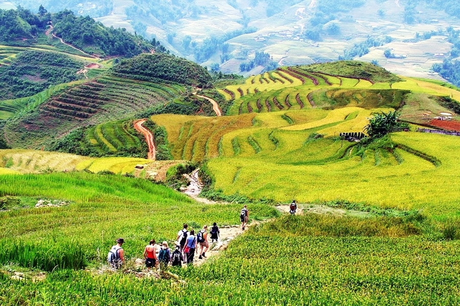Sapa by bus 3 days - 2 nights Bac Ha Market (Depart on only Friday) HA6