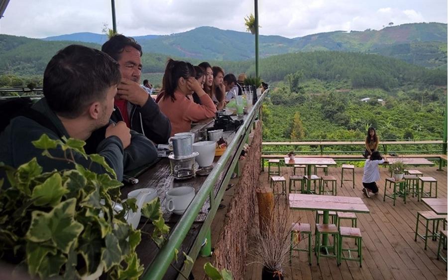 Weasel Coffee Workshop, Dalat