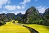 Hoa Lu Tam Coc 1 day